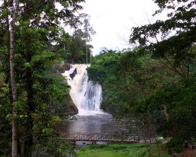 1 Day Jinja tour with source of the Nile boat tour and visits to Sezibwa Falls, Mabira Forest and Jinja sightseeing