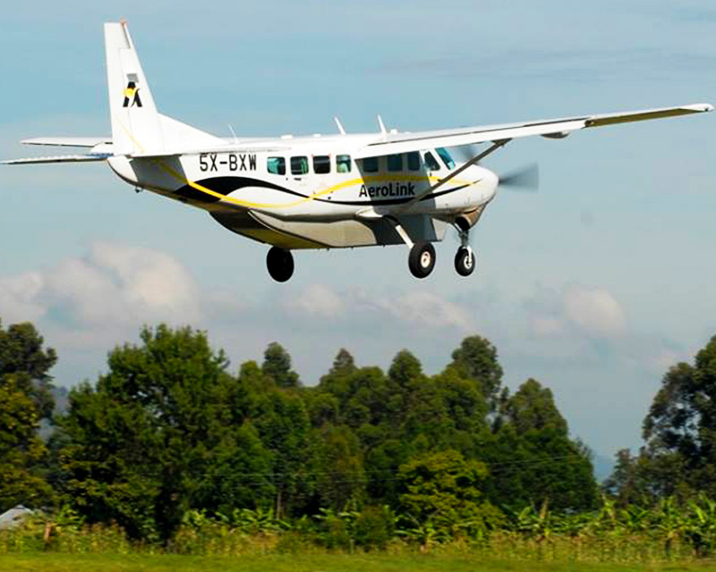 3 Days Flying Gorilla Trekking Bwindi safari to spotting mountain gorillas in their natural habitat