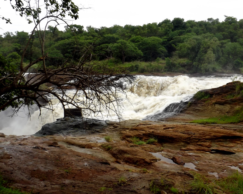 3 Days Murchison Falls wildlife safari for game viewing and top of the falls hike